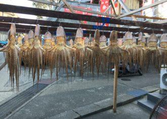 日間賀島の「たこ踊り」