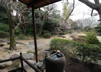 蹲踞のある旧家の植栽の景色