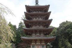 昨年の台風で醍醐寺の桜が大きな被害・・・しかし五重塔は