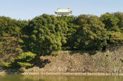 名古屋城 天守の間から見る