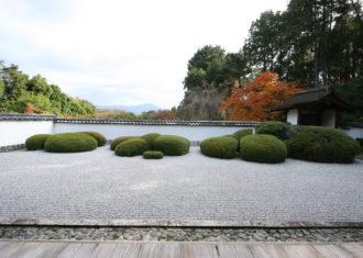 秋の京都正伝寺庭園