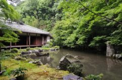 京都 八瀬近く 蓮華寺庭園の舟石