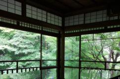 京都八瀬 瑠璃光院の青紅葉