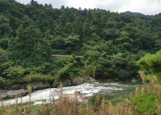 揖斐川の鮎をいただく