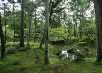 夢窓疎石の華麗な庭と建築がその時代の手本とされた 西芳寺