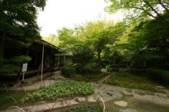 犬山 有楽苑の庭